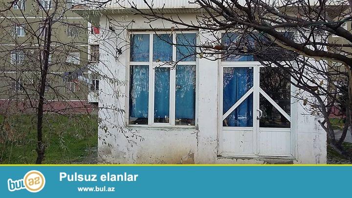 Sumqayıt şəhər 10-cu mik.Qreen Hause restoranın arxası...