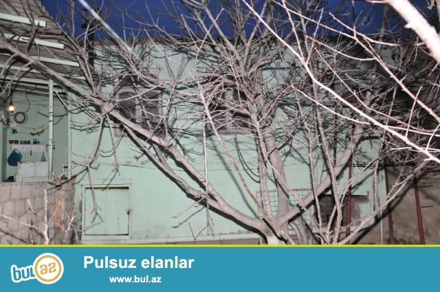 Sabunçu rayonu, Kürdəxanı qəsəbəsi, əsas yolun üsdündə, fotoya yaxın ərazidə 2...