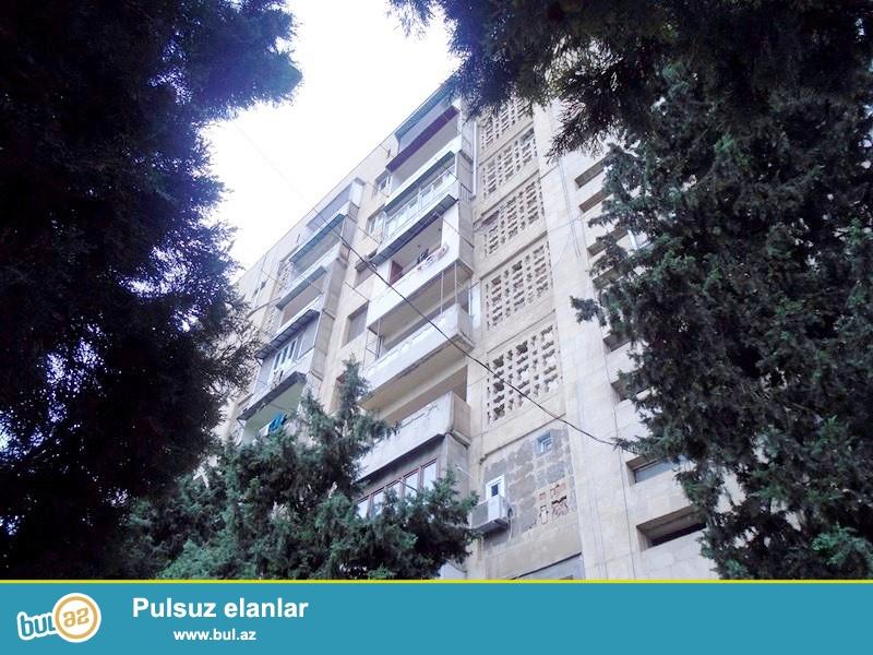 Tecili ! Baki seheri Yasamal rayonu, Huseyn Cavid prospekti unvaninda...