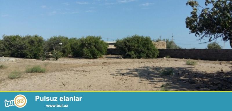 Turkanda tecili dənizdən 100 metr aralida torpaq sahəsi satiram...