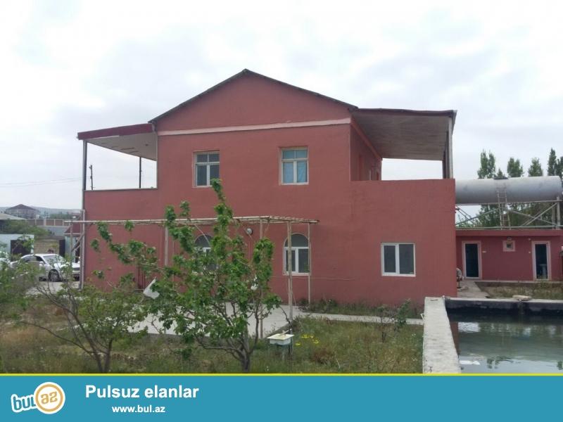 ÇOX TƏCİLİ təklif! Binəqədi rayonu Göradil bağlar massivi 20 sot sahəli bağ satılır...