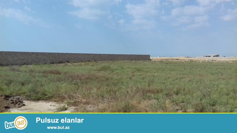 denizden 1.5 km aralida 40 sot  torpaq sahemi satiram . hasari suyu iwiqi qazi var. senedi belediyye selencemi ...