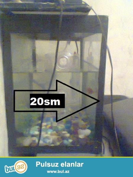 Akvaryum Az islenmis veziyyetdedi ustunde hec birsey verilmir sade akvaryum sadece 20 manata <br /> hundurluyu 30 sm uzunlugu 40sm eni 20sm\ <br /> 20-25 litr su tutur <br /> {Sekiller pis duzub uzurlu sayin}