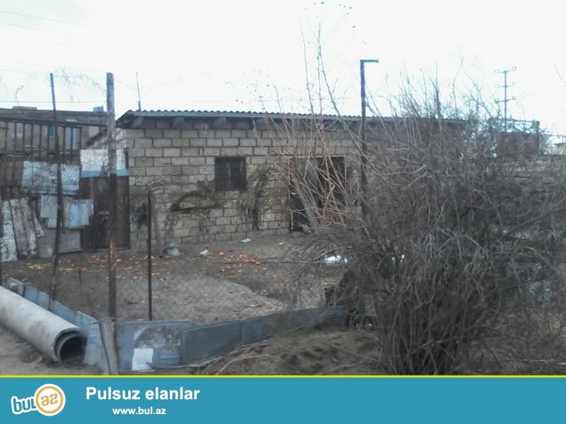 Pirşağı qəsəbəsi Huseynbala Əliyev küçəsində bağ sahəsi