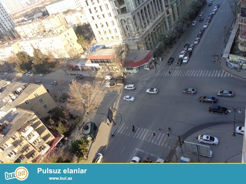 Yasamal rayonu, Hüseyn Cavid pr., Elmlər Akademiyası