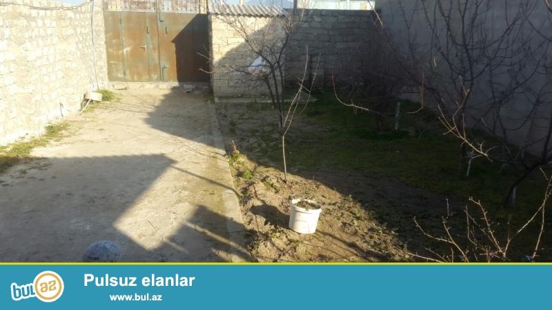 Tecili Sabuncu rayonu Mastaga qesebesinde esas yoldan 200 m