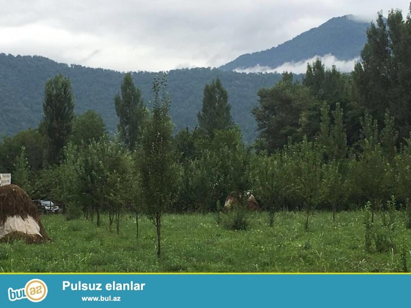 Qəbələ şəhərine gedən şossenin kınarında , Nohur gölü və Chenot hotelinin tam yaxınlığında yerləşən 40 sotluq torpaq sahəsi satılır...