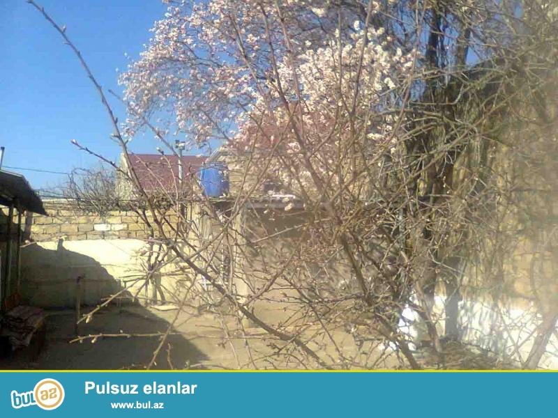 Bakı şəhəri Maştağa qəsəbəsi Maştağa-Buzovna trası Kirov dairəsi yaxınlığında əsas yoldan 10 metr məsafədə 1...