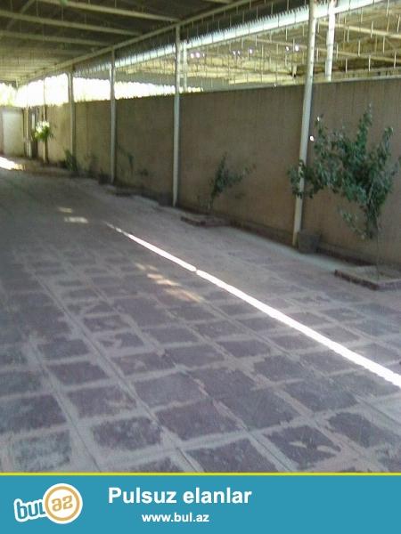 Şirvan şəhəri, Mehdi Hüseynzadə küçəsində, 6 sot torpaq sahəsi üstündə, 2 mərtəbəli həyət evi satıram...