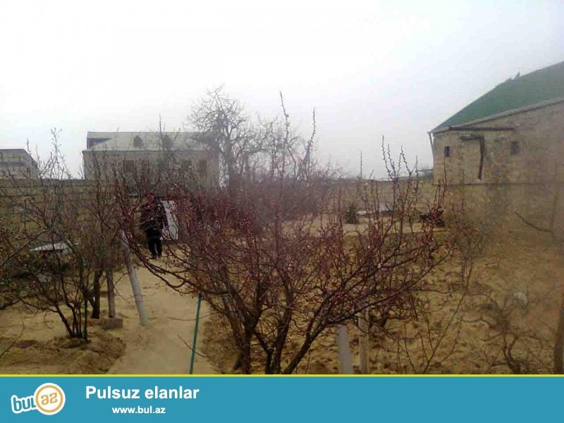 Sabunçu rayonu, Maştağa qəsəbəsi Qaya üstü adlanan ərazidə,