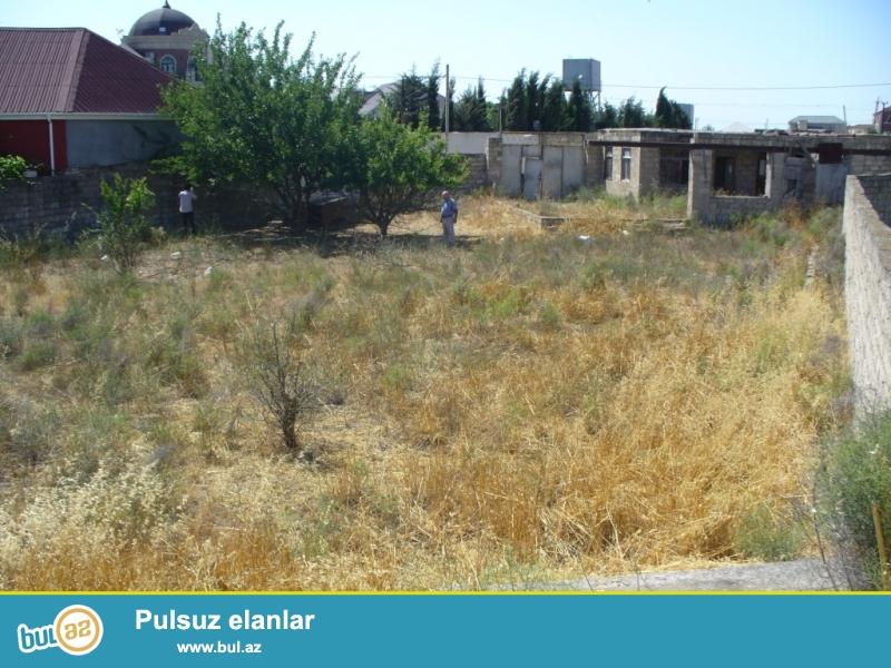 12 sot torpaq sahəsi Mərdəkanda Makaron fabrikinin arxasında yerləşir...